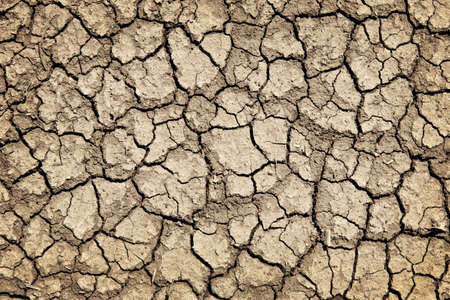flat earth: Background of dry cracked soil dirt or earth during drought