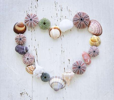 caracolas de mar: Corazón hechos de conchas de mar Mediterráneo, erizos y rocas de madera pintada Foto de archivo