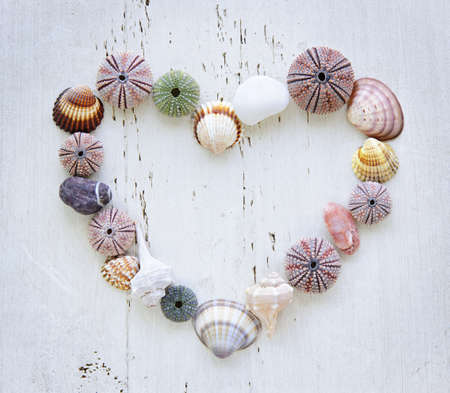 Heart made of Mediterranean sea shells, urchins and rocks on painted wood Stockfoto