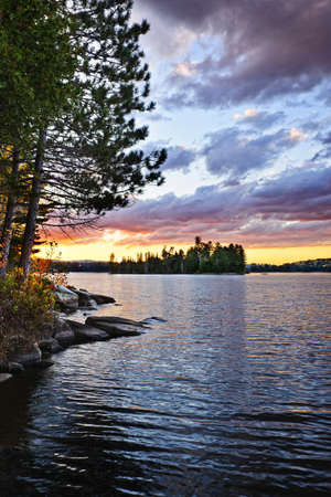 lake shore: Dramatic sunset and pines at Lake of Two Rivers in Algonquin Park, Ontario, Canada Stock Photo