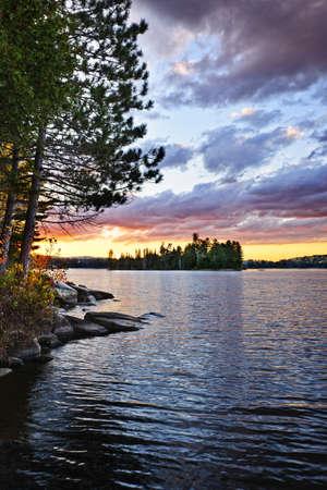 lagos: Puesta de sol espectacular y pinos en Lago de dos r�os en el Parque Algonquin, Ontario, Canad�