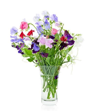 Boeket van kleurrijke zoete erwt bloemen in glazen vaas Stockfoto