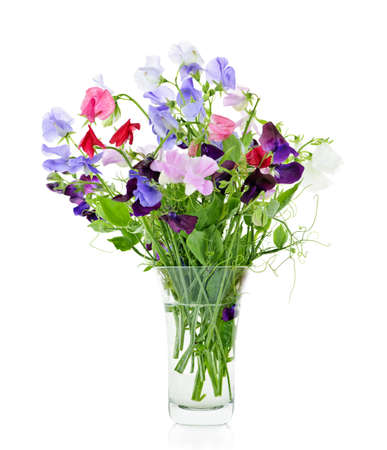 sweet pea: Bouquet of colorful sweet pea flowers in glass vase Stock Photo