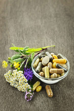 Herbs with alternative medicine herbal supplements and pills Stock Photo - 10500920