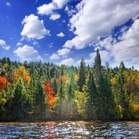 provincial forest parks: Forest of colorful autumn trees on sparkling lake