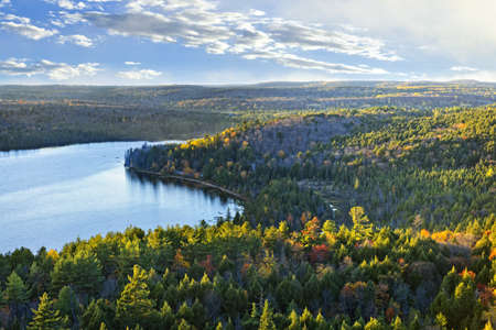 boreal: Fall forest and lake with colorful trees from above in Algonquin Park, Canada Stock Photo