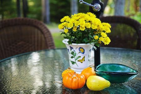 Patio table with flowers and gourds in fall