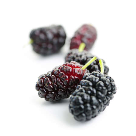 Few ripe mulberry berries close up on white background Stockfoto