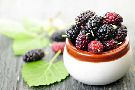 Ripe mulberry berries in a bowl, freshly picked Banque d'images