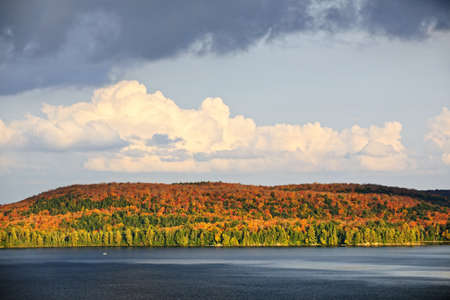 provincial forest parks: Forest of colorful autumn trees with lake and dramatic sky