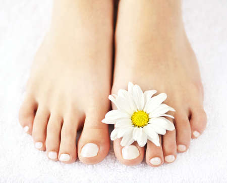 Soft female feet with pedicure and flowers close up photo