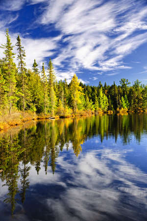 algonquin park: Evergreen forest and sky reflecting in calm lake at Algonquin Park, Canada