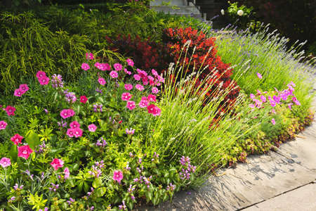 flowerbeds: Landscaped garden at house with blooming flowers Stock Photo