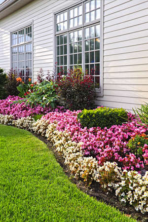 house siding: Flowerbed of colorful flowers against wall with windows Stock Photo