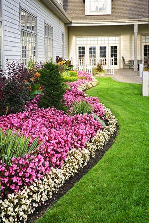 Bloembed van kleurrijke bloemen tegen de muur met ramen