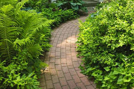 zpevněné: Zpevněná cihla cesta v svěží zelené letní zahradě Reklamní fotografie