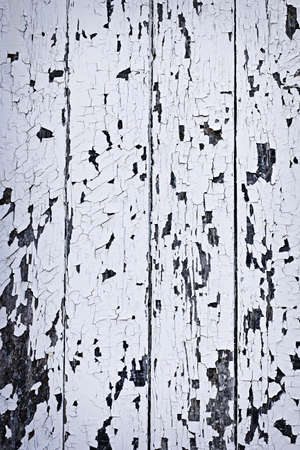 Background of old wood boards with peeling paint photo