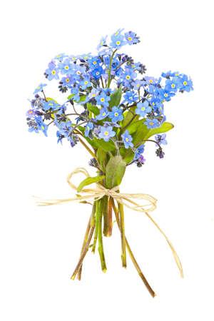 Boeket van blauwe wilde vergeet-mij-niet gebonden bloemen met strik op wit wordt geïsoleerd Stockfoto