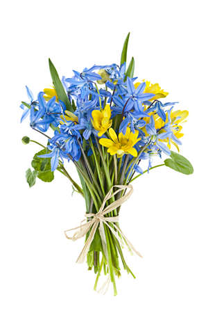 흰색 배경에 고립 봄 꽃의 공동 꽃다발 스톡 콘텐츠