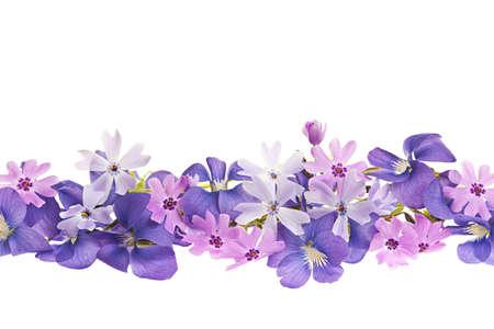 흰색 배경에 고립 된 보라색 제비 꽃과 이끼 분홍색 꽃의 배열 스톡 콘텐츠