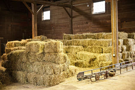 Interior of barn with hay bales stacks and conveyor belt photo
