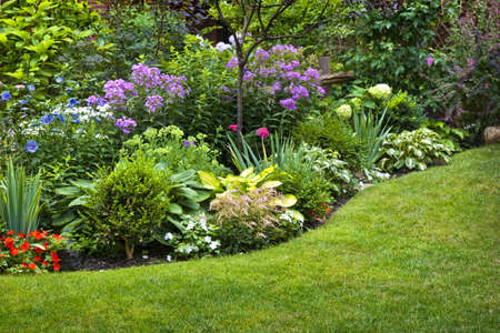 Lush landscaped garden with flowerbed and colorful plants photo