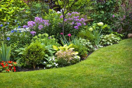 massif de fleurs: Luxuriant jardin paysager avec parterre et color�es plantes Banque d'images