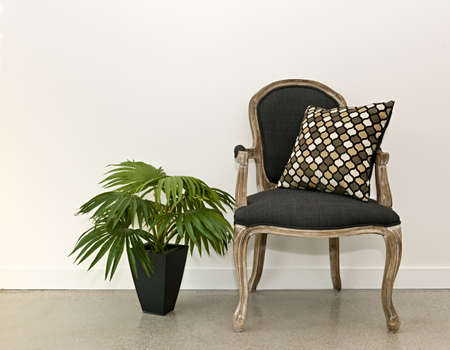 Antique armchair furniture with houseplant against white wall, interior design concept photo
