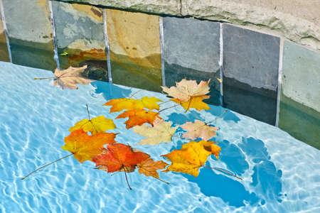 La caída deja flotando en el agua de la piscina