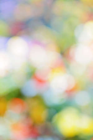 out of focus: Abstract defocused bokeh background with multiple colors