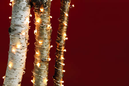 Red background with birch trees wrapped in Christmas lights photo