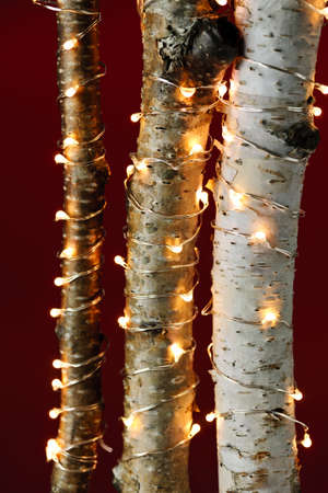 Birch trees wrapped in Christmas lights on red background Zdjęcie Seryjne