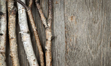 Birch tree trunks and branches on natural wood background Stock Photo - 16784861