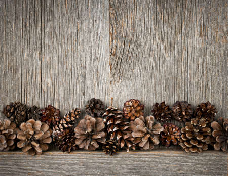 Rustic natural wooden background with pine cones photo