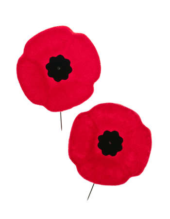 poppy flower: Two red poppy lapel pins for Remembrance Day Stock Photo