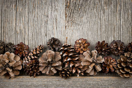 Rustic natural wooden background with pine cones Stock Photo - 17570792