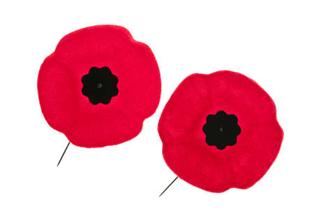 Two red poppy lapel pins for Remembrance Day 版權商用圖片