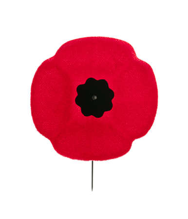 Red poppy lapel pin for Remembrance Day photo