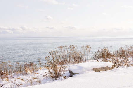 Snowy winter shore of lake Ontario in Sylvan park Toronto Stock Photo - 17664373