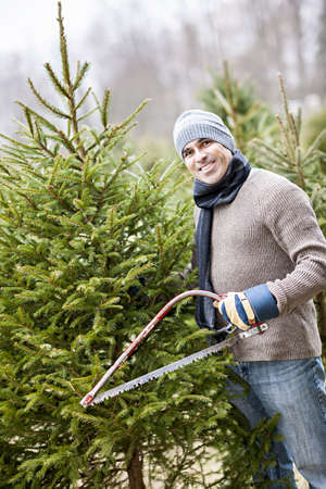 Man with saw choosing fresh Christmas trees at cut your own tree farm photo