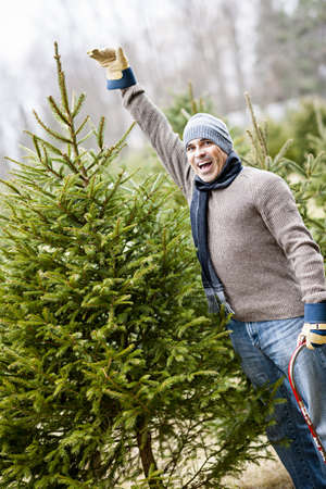 Man at cut your own Christmas tree farm showing tall spruce Stock Photo - 18341808