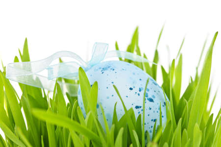 Blue speckled easter egg with ribbon in green grass Stock Photo - 18341635