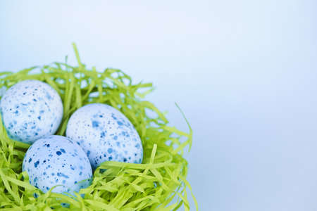 Three blue speckled easter eggs in green paper grass nest with copy space Stock Photo - 18341647