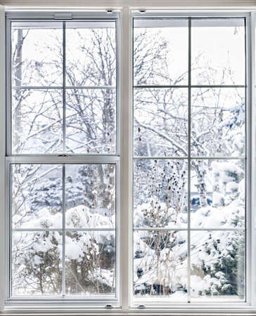 windows: Home vinyl insulated windows with winter view of snowy trees and plants