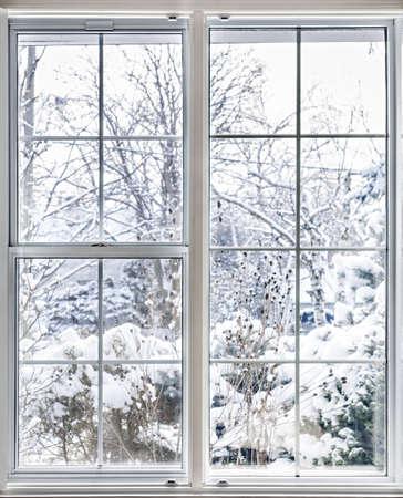 VENTANAS: Inicio vinilo ventanas aisladas con vista de invierno de los árboles nevados y plantas