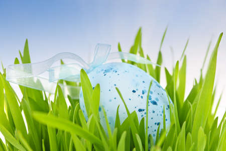 Blue speckled easter egg with ribbon in green grass Stock Photo - 18654201