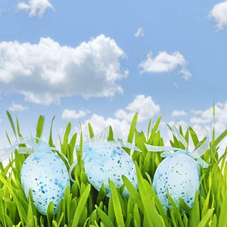 Three blue speckled easter eggs with ribbons in green grass on sky background Stock Photo - 18654199