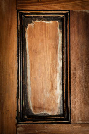 Panel in antique wooden door as vintage frame or rustic background Stock Photo - 19014587