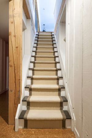 Stairway to basement in home interior with wood paneling photo