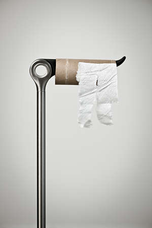 Metal stand with empty toilet paper roll Standard-Bild